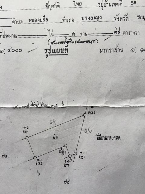 ที่ดินเหมาะปลูกบ้าน  land for house building-สำหรับ-ขาย-ซอยเขาตาโล-soi-khao-talo 20150908145136.jpg