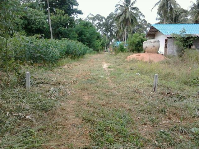 ที่ดินเหมาะปลูกบ้าน  land for house building-สำหรับ-ขาย-ห้วยใหญ่-hauy-yai 20151117211312.jpg