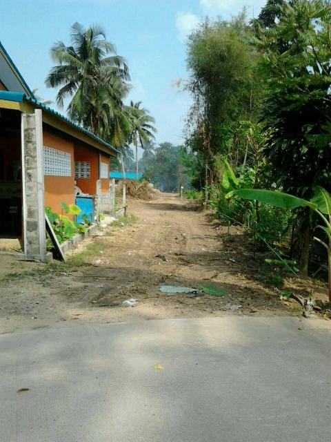 ที่ดินเหมาะปลูกบ้าน  land for house building-สำหรับ-ขาย-ห้วยใหญ่-hauy-yai 20151117211343.jpg
