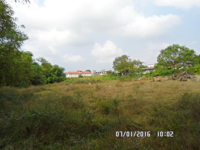 ที่ดินเหมาะปลูกบ้าน  land for house building-สำหรับ-ขาย-ห้วยใหญ่-hauy-yai 20160115162053.jpg