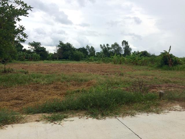 ที่ดินเหมาะปลูกบ้าน  land for house building-สำหรับ-ขาย-ห้วยใหญ่พัทยา-huay-yai-pattaya 20160829145353.jpg