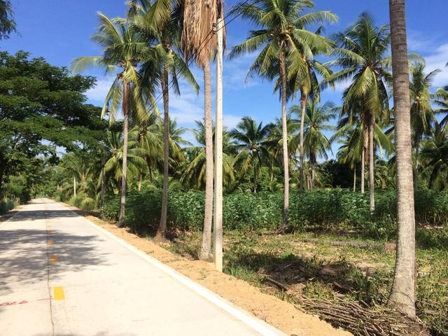 ที่ดินเหมาะสร้างหมู่บ้านจัดสรร land forhousingproject-สำหรับ-ขาย-นาจอมเทียนพัทยา-na-jomtien-pattaya 20161006192647.jpg