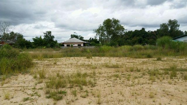 ที่ดินเหมาะสร้างหมู่บ้านจัดสรร land forhousingproject-สำหรับ-ขาย-ห้วยใหญ่พัทยา-huay-yai-pattaya 20170713130334.jpg
