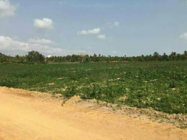 ที่ดินเหมาะปลูกบ้าน  land for house building-สำหรับ-ขาย-ห้วยใหญ่พัทยา-huay-yai-pattaya 20170912134108.jpg