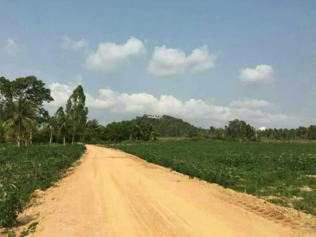 ที่ดินเหมาะปลูกบ้าน  land for house building-สำหรับ-ขาย-ห้วยใหญ่พัทยา-huay-yai-pattaya 20170912134113.jpg