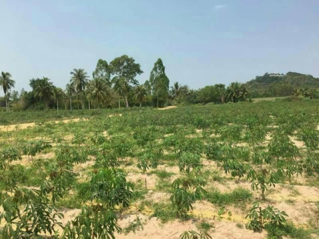 ที่ดินเหมาะปลูกบ้าน  land for house building-สำหรับ-ขาย-ห้วยใหญ่พัทยา-huay-yai-pattaya 20170912134122.jpg