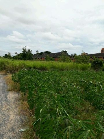 ที่ดินเหมาะปลูกบ้าน  land for house building-สำหรับ-ขาย-สยามคัลทรี้คลับพัทยา-siam-country-club-pattaya 20170915095723.jpg