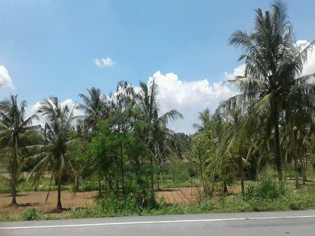 ที่ดินเหมาะสร้างหมู่บ้านจัดสรร land forhousingproject-สำหรับ-ขาย-เขาไม้แก้ว-l-khao-mai-kaew 20170923133215.jpg