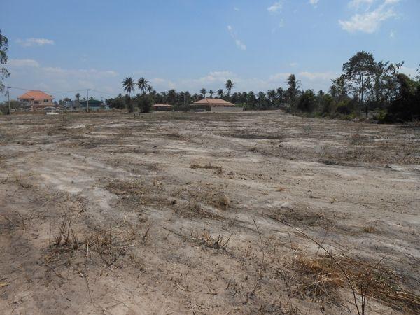 ที่ดินเหมาะสร้างโรงงานl  land well suited for warehouse-สำหรับ-ขาย-ตะเคียนเตี้ยะ-takientia 20171002223559.jpg