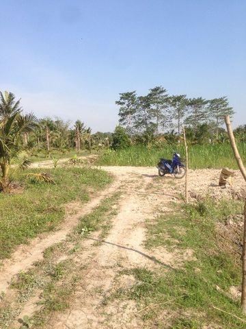 ที่ดินเหมาะปลูกบ้าน  land for house building-สำหรับ-ขาย-ห้วยใหญ่-hauy-yai 20180122103411.jpg