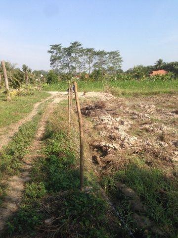 ที่ดินเหมาะปลูกบ้าน  land for house building-สำหรับ-ขาย-ห้วยใหญ่-hauy-yai 20180122103430.jpg