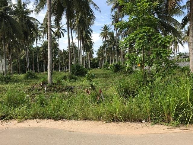ที่ดินเหมาะสร้างหมู่บ้านจัดสรร land forhousingproject-สำหรับ-ขาย-ห้วยใหญ่-hauy-yai 20180511150554.jpg