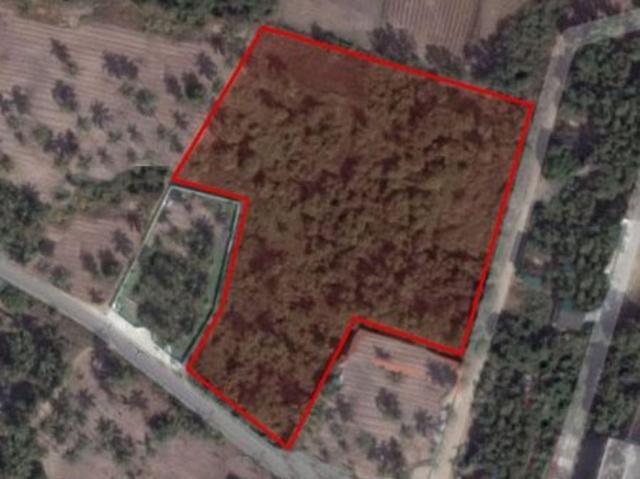ที่ดินเหมาะปลูกบ้าน  land for house building-สำหรับ-ขาย-หนองปลาไหล-พัทยา-nongpralai-pattaya 20180515191218.jpg