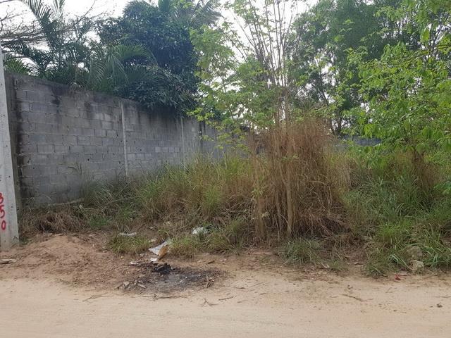 ที่ดินเหมาะปลูกบ้าน  land for house building-สำหรับ-ขาย-ตะเคียนเตี้ยะ-takientia 20190505142845.jpg