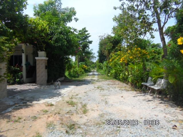 ที่ดินเหมาะปลูกบ้าน  land for house building-สำหรับ-ขาย-ซอยเขาน้อยพัทยาใต้-soi-khao-noi-(boonsampan-temple) 20190524170820.jpg