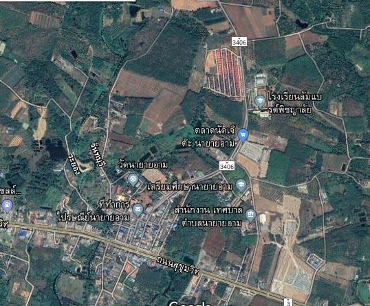 ที่ดินสร้างอาคารพาณิชย์ land for shop building-สำหรับ-ขาย-นายายอาม-จันทบุรีl-na-yai-arm--chanthaburi 20190605093511.jpg