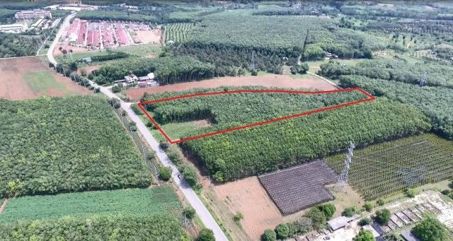 ที่ดินสร้างอาคารพาณิชย์ land for shop building-สำหรับ-ขาย-นายายอาม-จันทบุรีl-na-yai-arm--chanthaburi 20190605095713.jpg