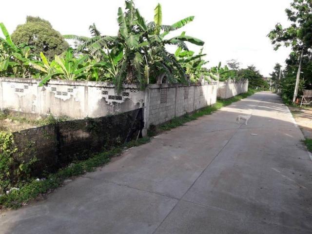 ที่ดินเหมาะปลูกบ้าน  land for house building-สำหรับ-ขาย-พัทยาฝั่งตะวันออก 20191024121759.jpg