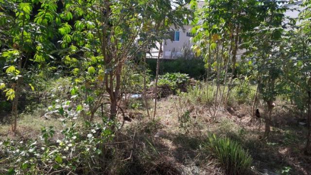 ที่ดินเหมาะปลูกบ้าน  land for house building-สำหรับ-ขาย-ถนนเทพประสิทธิ์-พัทยาใต้จอมเทียน 20200703181245.jpg