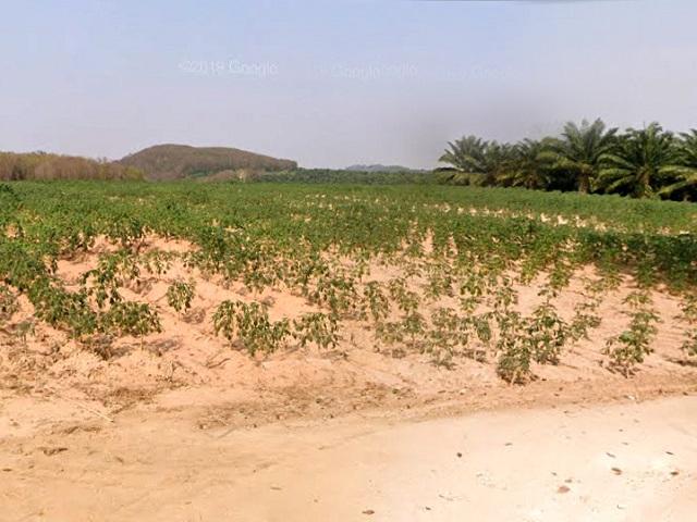 ที่ดินเหมาะปลูกบ้าน  land for house building-สำหรับ-ขาย-ห้วยใหญ่-hauy-yai 20200911093601.jpg