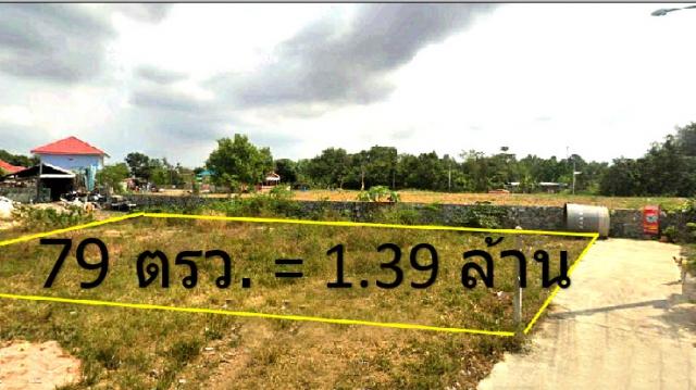 ที่ดินเหมาะปลูกบ้าน  land for house building-สำหรับ-ขาย-ซอยเนินพลับหวาน-(soi-nern-plupwan) 20201006135238.jpg