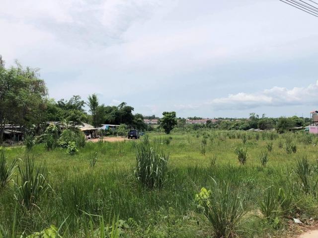 ที่ดินเหมาะสร้างหมู่บ้านจัดสรร land forhousingproject-สำหรับ-ขาย-ซอยทุ่งกลมตาลหมัน--soi-tungklomtanman 20201201093319.jpg