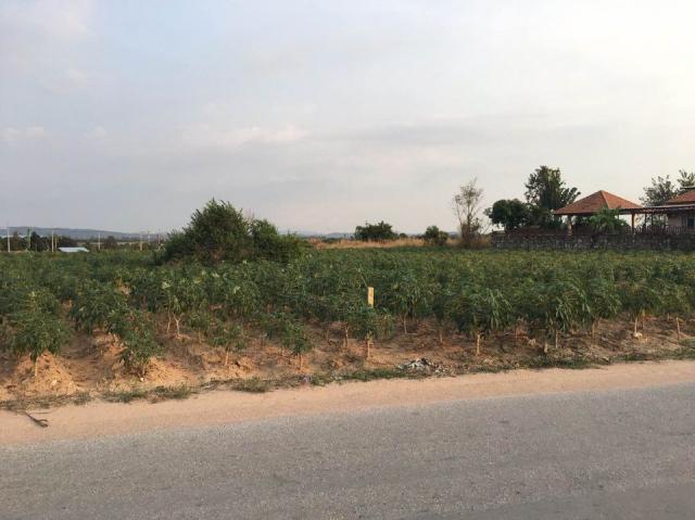 ที่ดินเหมาะปลูกบ้าน  land for house building-สำหรับ-ขาย-ซอยทุ่งกลมตาลหมัน--soi-tungklomtanman 20210102133026.jpg