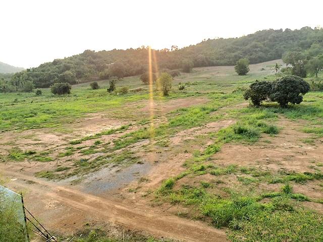 ที่ดินเหมาะสร้างหมู่บ้านจัดสรร land forhousingproject-สำหรับ-ขาย-เขาชีจรรย์-บ้านอำเภอl-khao-cheejan--baan-amphur 20210331100021.jpg
