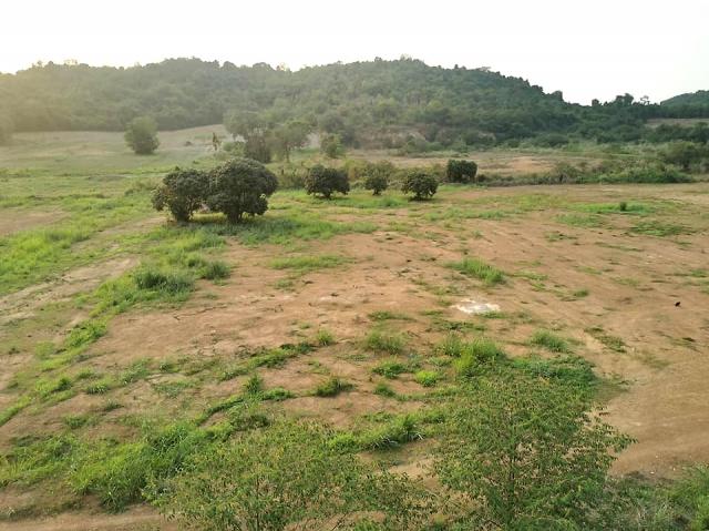 ที่ดินเหมาะสร้างหมู่บ้านจัดสรร land forhousingproject-สำหรับ-ขาย-เขาชีจรรย์-บ้านอำเภอl-khao-cheejan--baan-amphur 20210331100041.jpg