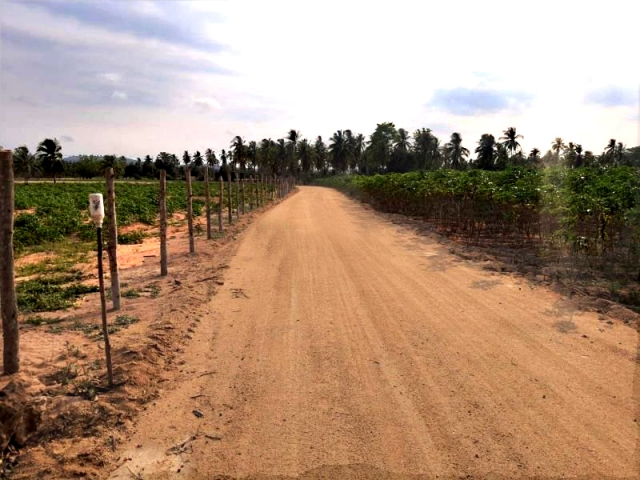 ที่ดินเหมาะสร้างหมู่บ้านจัดสรร land forhousingproject-สำหรับ-ขาย-ห้วยใหญ่-hauy-yai 20210407094154.jpg
